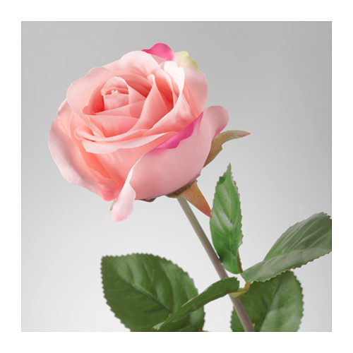 SMYCKA - artificial flower, Rose/pink | IKEA Hong Kong and Macau - PE596725_S4