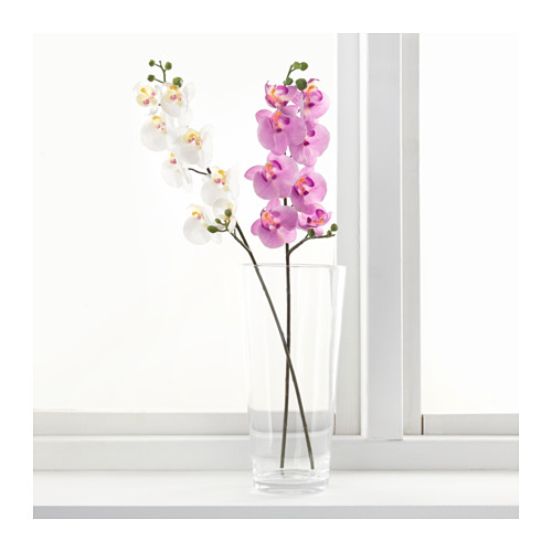 SMYCKA - artificial flower, Orchid/white | IKEA Hong Kong and Macau - PE596754_S4