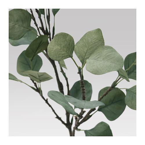 SMYCKA - 人造樹葉, 桉木/綠色 | IKEA 香港及澳門 - PE596763_S4