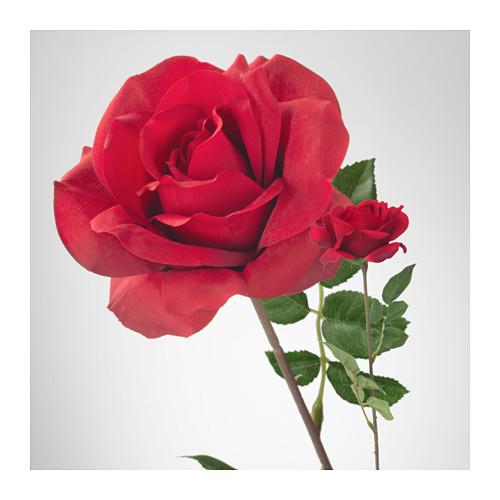 SMYCKA - 人造花, 玫瑰/紅色   IKEA 香港及澳門 - PE596775_S4