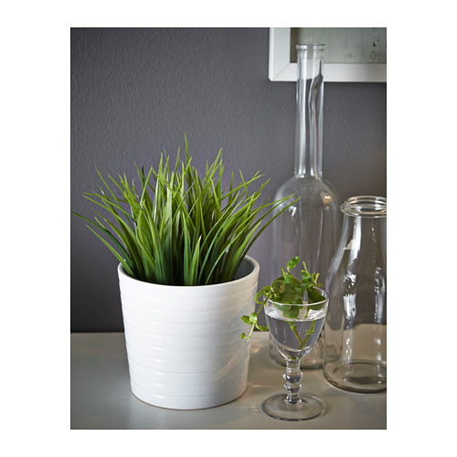 FEJKA - artificial potted plant, in/outdoor grass | IKEA Hong Kong and Macau - PE386551_S4