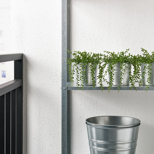 FEJKA - artificial potted plant, in/outdoor String of beads | IKEA Hong Kong and Macau - PE745071_S4