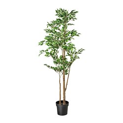 FEJKA - artificial potted plant, Weeping fig | IKEA Hong Kong and Macau - PE745274_S3