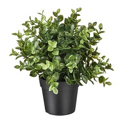 FEJKA - artificial potted plant, oregano | IKEA Hong Kong and Macau - PE745271_S3