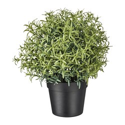 FEJKA - artificial potted plant, Rosemary | IKEA Hong Kong and Macau - PE745320_S3