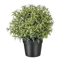 FEJKA - 人造盆栽, 迷迭香 | IKEA 香港及澳門 - PE745320_S3