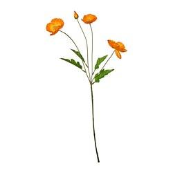 SMYCKA - 人造花, 室內/戶外用/罌粟 橙色 | IKEA 香港及澳門 - PE800013_S3
