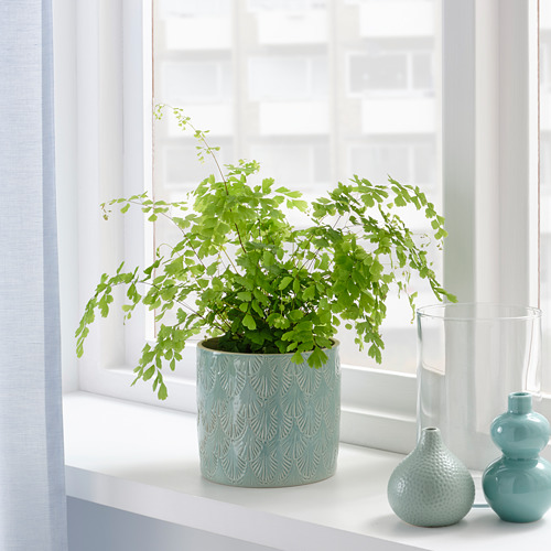 CHIAFRÖN - plant pot, in/outdoor light blue | IKEA Hong Kong and Macau - PE804349_S4