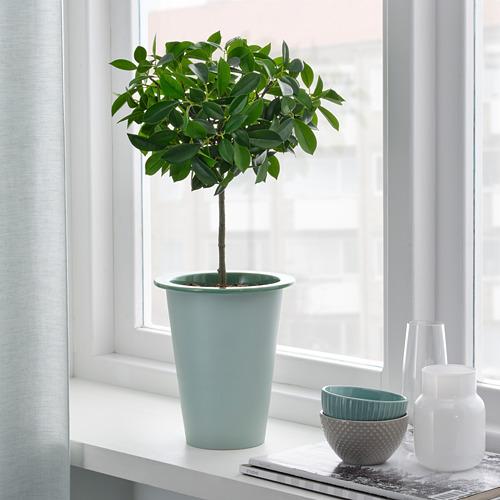FNITTRIG - 花盆, 室內/戶外用 綠色   IKEA 香港及澳門 - PE804294_S4