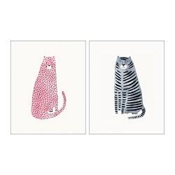 BILD - poster, pink and blue cats   IKEA Hong Kong and Macau - PE803211_S3