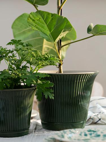 KAMOMILL - 花盆, 綠色 | IKEA 香港及澳門 - PE748244_S4