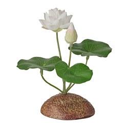 FEJKA - 人造植物, 室內/戶外用/睡蓮 白色   IKEA 香港及澳門 - PE804146_S3