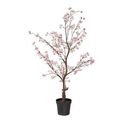 FEJKA - 人造盆栽, 室內/戶外用/櫻花 粉紅色   IKEA 香港及澳門 - PE804176_S3