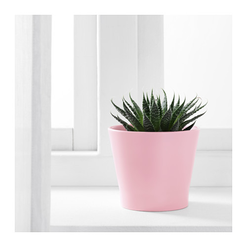PAPAJA - 花盆, 淺粉紅色 | IKEA 香港及澳門 - PE603478_S4