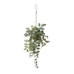 INVÄNDIG - 人造植物, 懸掛   IKEA 香港及澳門 - PE804040_S3
