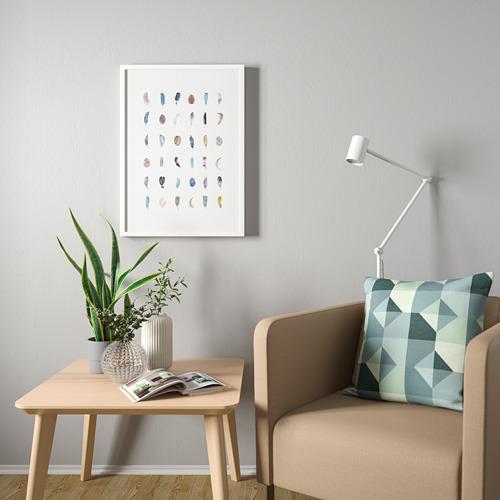 BILD - poster, Colourful feathers | IKEA Hong Kong and Macau - PE803850_S4