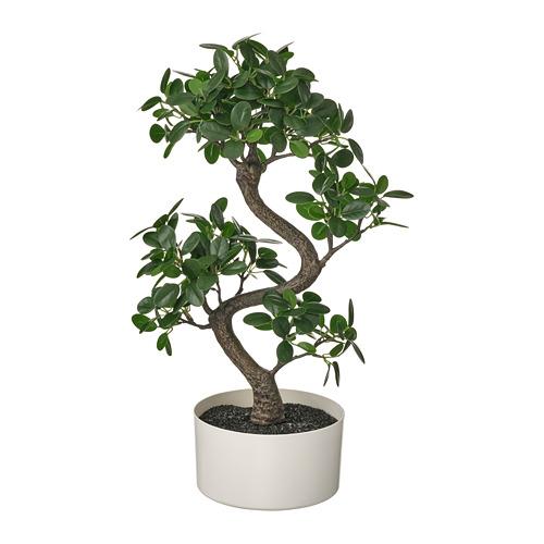 FEJKA - 人造盆栽連花盆, 室內/戶外用 盆景 | IKEA 香港及澳門 - PE809427_S4