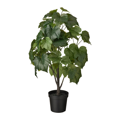 FEJKA - artificial potted plant, in/outdoor Crimson glory vine | IKEA Hong Kong and Macau - PE809452_S4