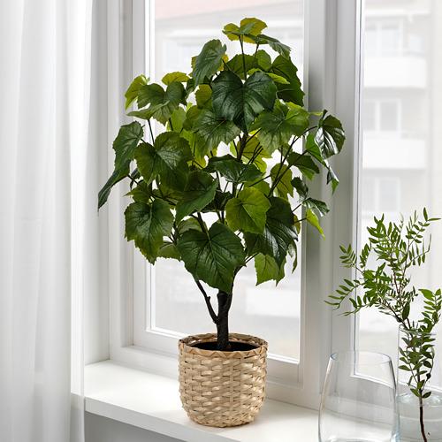 FEJKA - artificial potted plant, in/outdoor Crimson glory vine | IKEA Hong Kong and Macau - PE809453_S4