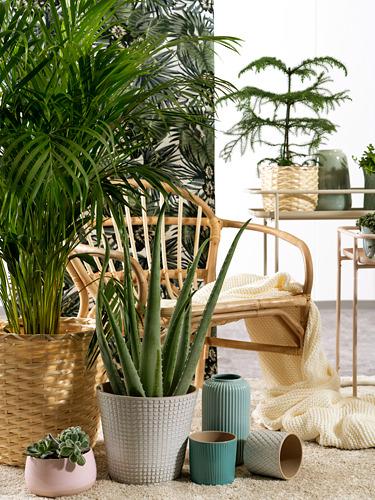 CHIAFRÖN - 花盆, 白色   IKEA 香港及澳門 - PE750486_S4