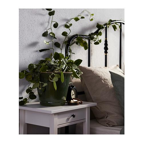 KAMOMILL - 花盆, 綠色 | IKEA 香港及澳門 - PH160468_S4