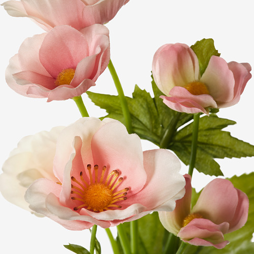 SMYCKA - 人造花, 室內/戶外用/秋牡丹 淺粉紅色 | IKEA 香港及澳門 - PE810054_S4