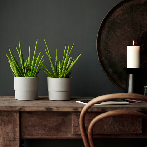 NYPON - plant pot, in/outdoor grey | IKEA Hong Kong and Macau - PE754544_S4