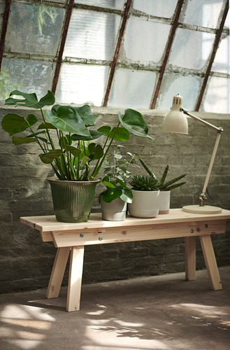 KAMOMILL - 花盆, 綠色 | IKEA 香港及澳門 - PE754515_S4