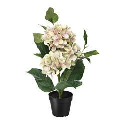 FEJKA - 人造盆栽, 室內/戶外用/繡球花 綠色   IKEA 香港及澳門 - PE717271_S3