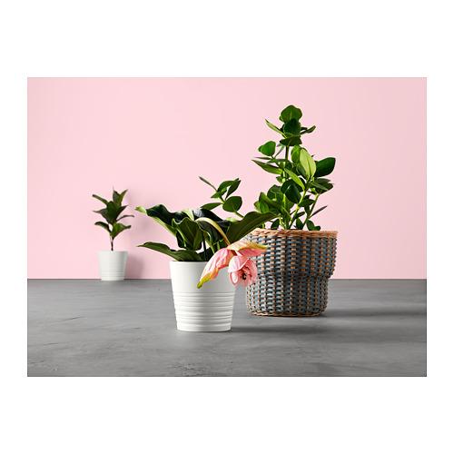 MUSKOT 花盆