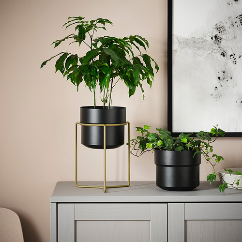 GOJIBÄR - 花盆連架, 室內/戶外用 黑色/黃銅色 | IKEA 香港及澳門 - PE820981_S4
