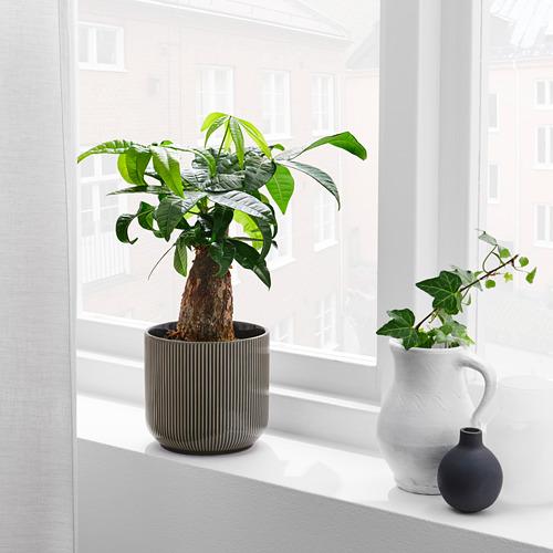 GRADVIS - 花盆, 室內/戶外用 深灰色 | IKEA 香港及澳門 - PE820995_S4
