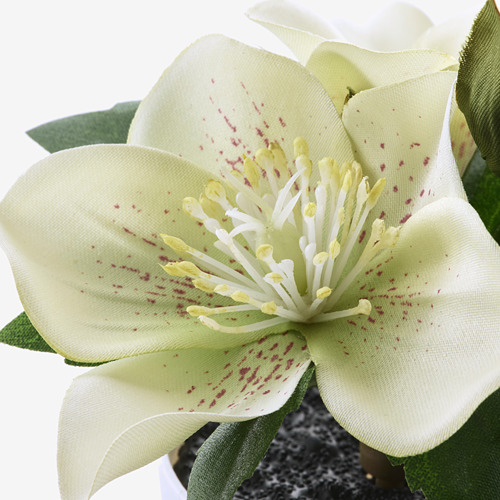 FEJKA - 人造盆栽連花盆,3件套裝, 室內/戶外用/綠色/白色   IKEA 香港及澳門 - PE819176_S4