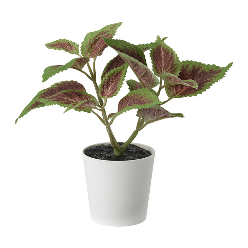 FEJKA - artificial potted plant with pot, in/outdoor Painted nettle | IKEA Hong Kong and Macau - PE819177_S4
