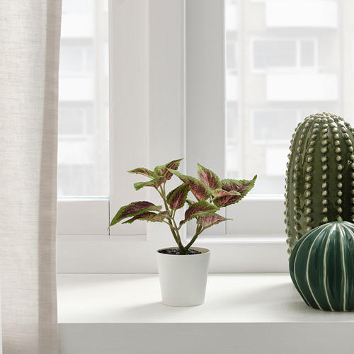 FEJKA - artificial potted plant with pot, in/outdoor Painted nettle | IKEA Hong Kong and Macau - PE819178_S4