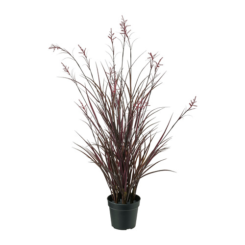 FEJKA - artificial potted plant, in/outdoor field grass   IKEA Hong Kong and Macau - PE819186_S4