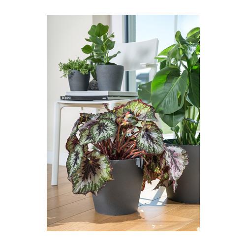 PERSILLADE - plant pot, dark grey | IKEA Hong Kong and Macau - PE723546_S4