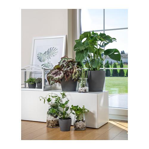 PERSILLADE - plant pot, dark grey | IKEA Hong Kong and Macau - PE723547_S4