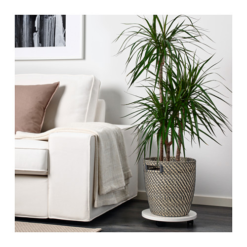 RÅGKORN - plant pot, in/outdoor natural | IKEA Hong Kong and Macau - PE625530_S4