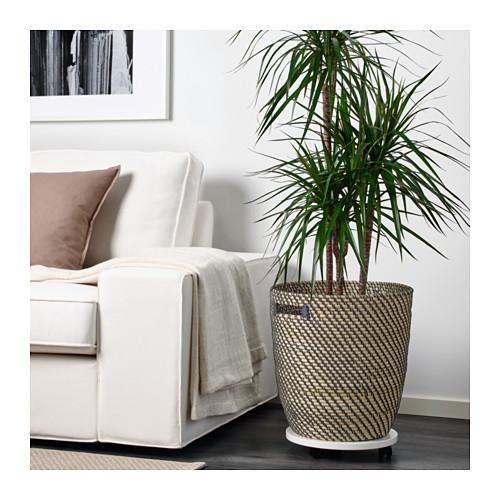 RÅGKORN - 花盆, 室內/戶外用 原色 | IKEA 香港及澳門 - PE625531_S4