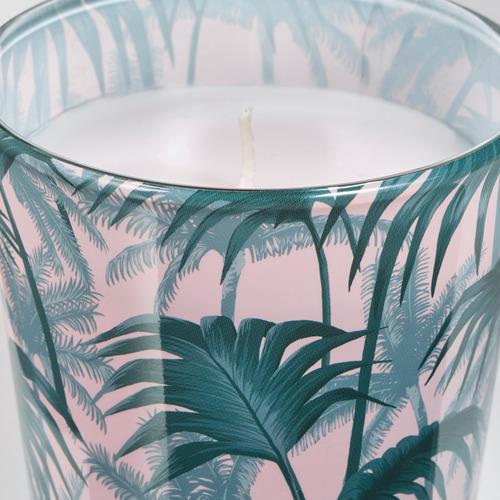 AVLÅNG 蠟燭連玻璃杯