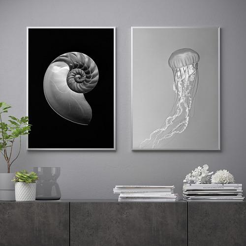 BILD - 海報, 鸚鵡螺和水母   IKEA 香港及澳門 - PE821721_S4