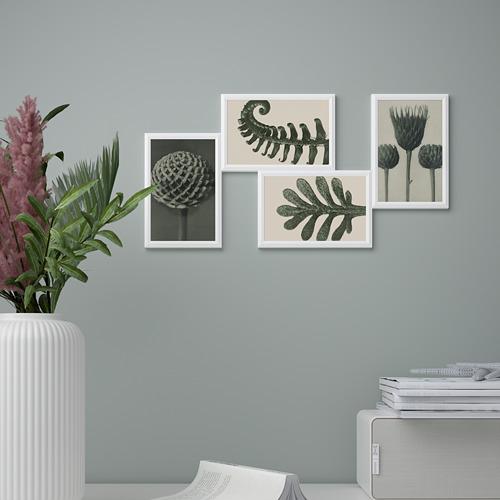 YLLEVAD - 藝術卡, 植物細節   IKEA 香港及澳門 - PE821724_S4