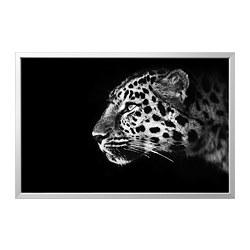 BJÖRKSTA - picture with frame, cheetah/aluminium-colour   IKEA Hong Kong and Macau - PE821842_S3