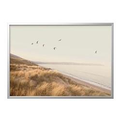 BJÖRKSTA - 畫連框, 海邊小鳥/鋁色   IKEA 香港及澳門 - PE822291_S3
