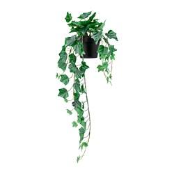 FEJKA - 人造盆栽, 室內/戶外用/懸掛 長春藤 | IKEA 香港及澳門 - PE782558_S3