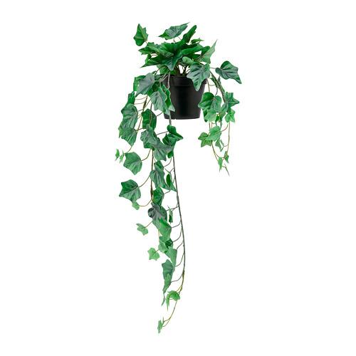 FEJKA - 人造盆栽, 室內/戶外用/懸掛 長春藤 | IKEA 香港及澳門 - PE782558_S4
