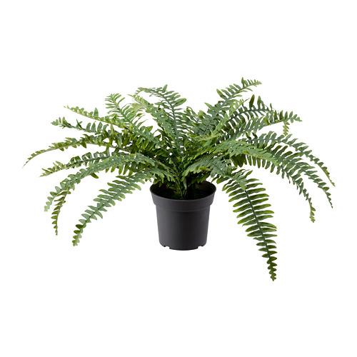 FEJKA - 人造盆栽, 室內/戶外用 蕨 | IKEA 香港及澳門 - PE782562_S4