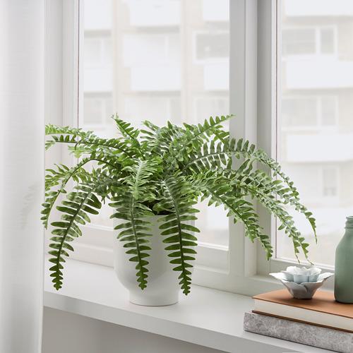FEJKA - 人造盆栽, 室內/戶外用 蕨 | IKEA 香港及澳門 - PE782563_S4