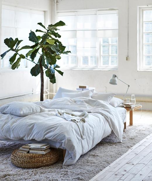 白色房間中央放有一塊米色地氈,還有採用白色床上用品的矮床。